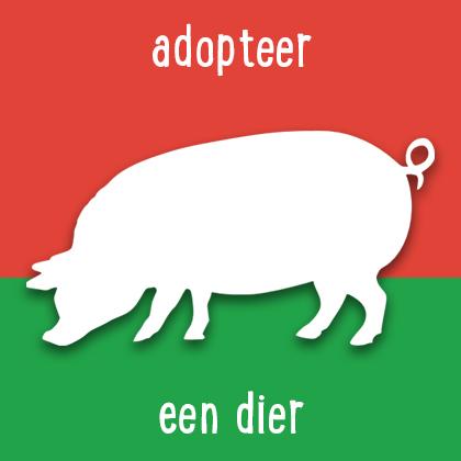 button; adopteer een dier